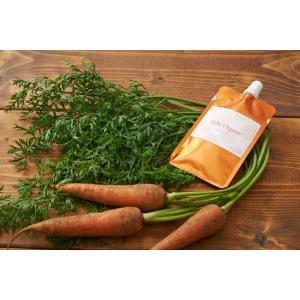 離乳食 無添加 ベビーフード オーガニック 有機無農薬 野菜 天然だし BabyOrgente にんじんゼリー 1袋|beans-japan