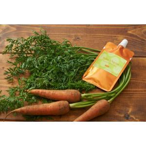 離乳食 無添加 ベビーフード オーガニック 有機無農薬 野菜 天然だし BabyOrgente 葉付き丸ごとニンジンおじや 1袋|beans-japan