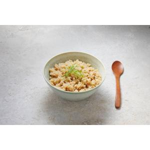無添加 高たんぱく質 低糖質 食塩不使用 砂糖不使用 天然だし 家庭の日常食 糖質が気になる人 キヌア粥(鰹だし仕立て) 1袋|beans-japan