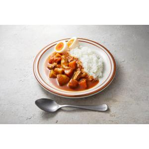 無添加 高たんぱく質 低糖質 食塩不使用 砂糖不使用 天然だし 家庭の日常食 糖質が気になる人 昔ながらのカレー1袋|beans-japan