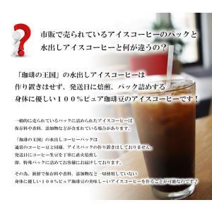 【水出しアイスコーヒー】コロンビア(アイスパック40g×4個セット)|beans510|04