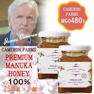 プレミアムマヌカハニー MGO480+ ジェームズキャメロン ニュージーランド産ハチミツ 100%天然蜂蜜 ギフト 贈り物|beanspot