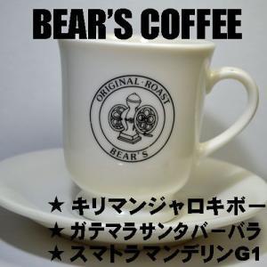 コーヒー豆お試しセット 100g 3種類 キリマンジャロ マンデリン グアテマラ 珈琲豆送料無料メール便 人気に訳ありコーヒー|bearscoffee