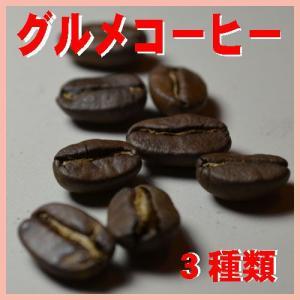 コーヒー豆お試し グルメコーヒー 300g 3種類 コーヒー豆豆のまま コーヒー豆粉 お選び下さい コーヒー豆送料無料 人気に訳ありコーヒー|bearscoffee