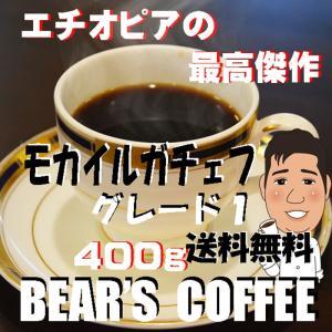 モカ コーヒー豆モカイルガチェフ 400g コーヒー豆送料無料 オーガニック コーヒー激安 無農薬コ...
