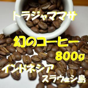 bears coffee コーヒー豆トラジャ ママサ 800...
