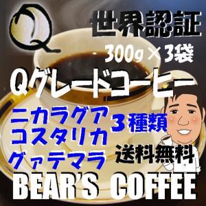 コーヒー豆お試し Qグレード 300g 3種類 コーヒー豆ガテマラ コーヒー豆コスタリカ コーヒー豆ニカラグア|bearscoffee
