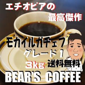 モカ モカイルガチェフ 3kg コーヒー豆送料無料 珈琲豆半額以上 業務用コーヒー オーガニックコー...
