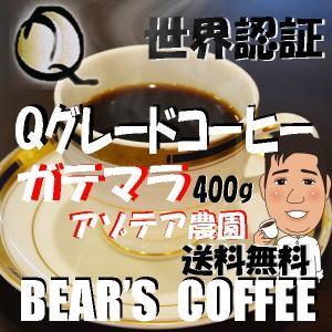グァテマラ コーヒー豆ガテマラ アゾテア農園 400g 人気に訳ありコーヒー コーヒー半額 Qグレードコーヒー |bearscoffee