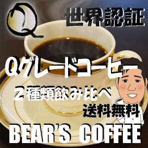 Qグレードセット Qグレードコスタリカ 150g Qグレードガテマラ 150g コーヒー送料無料 コーヒー訳あり人気|bearscoffee