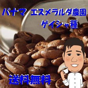 bears coffee コーヒー豆パナマ エスメラルダ 200g 高級コーヒー豆|bearscoffee