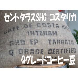 bears coffee Qグレードコーヒー コーヒー豆コタリカ 200g コーヒー送料無料 高級コーヒー豆 高品質コーヒー|bearscoffee