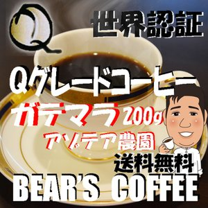 bears coffee コーヒー豆グアテマラ アンティグア アゾテア農園 200g 送料無料メール便|bearscoffee