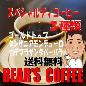 コーヒー豆お試し スペシャルティロースト 3種類 300g 3袋 コーヒー豆豆のまま コーヒー豆粉 お選び下さい|bearscoffee