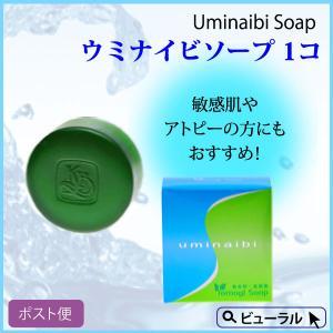 カミヤマ美研 ウミナイビ洗顔石鹸(ヨモギソープ) 送料最安 beaural