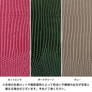 NEXUS DIGNO URBANO スマホケース ネクサス ディグノ アルバーノ EM01L 601KC 503KC 手帳型 トカゲ柄 リザード ベルト付き|beaute-shop|10