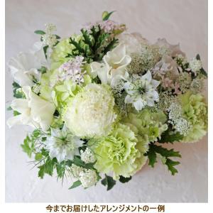 花 お供え お悔やみ ギフト ペット フラワーアレンジメント 生花 おしゃれ メッセージカード ホワイト ha-w|beautiful-boy