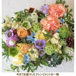花 ギフト プレゼント アレンジ 生花 おしゃれ フラワーアレンジメント オススメ はやり 花を贈る カラフル b-c|beautiful-boy