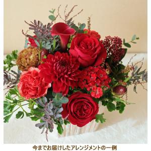 花 ギフト プレゼント 花を贈る 画像 誕生日 結婚 記念日 還暦 お見舞い 開店 新築 お祝い フラワー アレンジメント 赤 レッドha-r|beautiful-boy