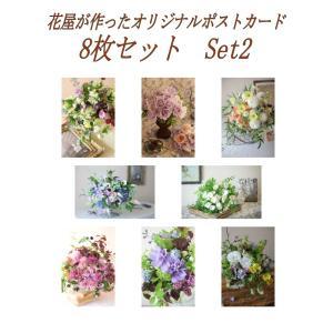 ポストカード おしゃれ 花 写真 8枚(8種)+おまけ1枚 セット 季節 モダン 絵葉書  POSTCARD 植物 自然 デザイン ポイント増量 set2 beautiful-boy