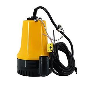 Qiilu DC 12V 給水&排水ポンプ 農業灌漑ポンプ マイクロ水中ポンプ 水平 4600rpmモーター 海水対応 水槽 池 船 ボート 軽量 静|beautyh