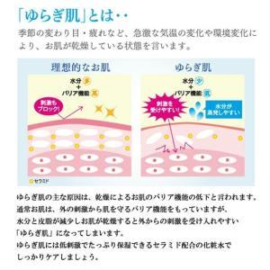 【即納】シェモア B:skin(ビースキン) Rich Lotion(リッチローション) しっとりタイプ(化粧水) 100mL|beautyii|02