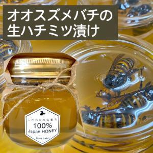 オオスズメバチの生ハチミツ漬け 350g|beeslabo