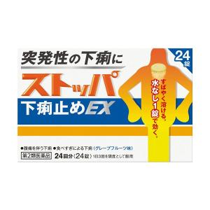 (くらしの応援クーポン対象)ストッパ下痢止めEX 24回分 【第2類医薬品】