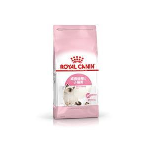 ロイヤルカナン FHN キトン 子猫用 2kg|behatu