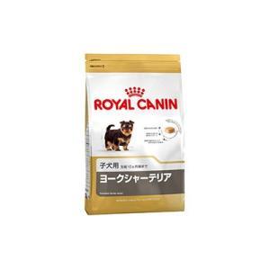 ロイヤルカナン BHN ヨークシャテリア 子犬用 500g|behatu