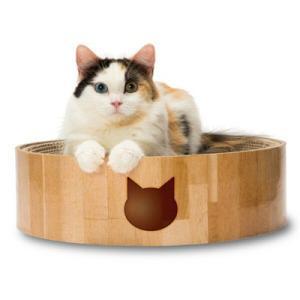 猫壱 バリバリボウル 猫柄|behatu