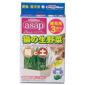 ドギーマンハヤシ キャティーマン 猫の生野菜 種と土 3回分|behatu