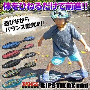 送料無料 ラングスジャパン ロングスケート リ...の詳細画像1