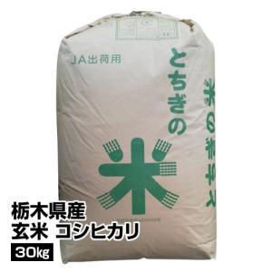 t_29年産 玄米栃木県産コシヒカリ 30kg_490691...