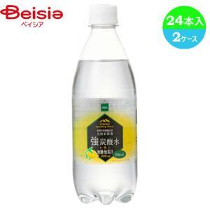 炭酸水 ベイシア 強炭酸水レモン 天然水使用 500ml×24本_4571422572209_74 beisia