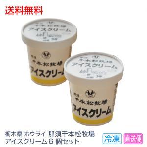 送料無料 お歳暮 ギフト アイスクリーム 栃木県 ホウライ 那須千本松牧場アイスクリーム 6個セット...
