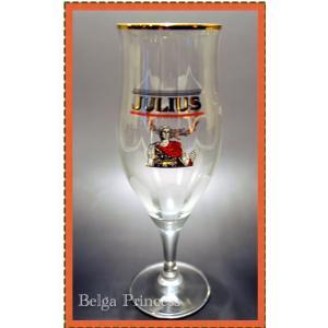 ヒューガルデン ジュリウス 専用グラスです。 ベルギー現地で仕入れた一点もので、希少性の高い商品です...