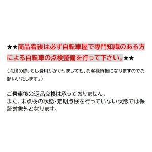 折りたたみ自転車 自転車 20インチ 低床フレーム シマノ6段変速ギア ツートンカラー 安い 折り畳み|belkis|02