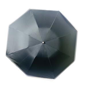 新品  ポロラルフローレン POLO Ralph Lauren 傘 軽量 折りたたみ傘  ブラックの...