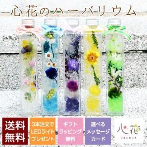 花 ギフト 誕生日祝い プレゼント ハーバリウム 幸せの四つ葉のクローバー 選べる16種類 送料無料 ギフトラッピング無料 メッセージカード付き