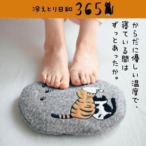 2d2b75af5e 湯たんぽ 充電式 おしゃれ 足 手 腹 腰 肩 温活 猫 冷え性 冷え取り 冷えとり日和365