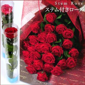 クリスマス 花 プレゼント 2020 プリザーブドフラワー  #ステム付きローズ 「なでしこJAPAN」にカズが贈ったバラ あすつく対応|belles-fleurs