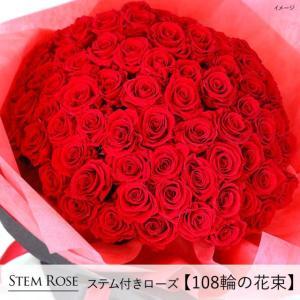 クリスマス 花 プレゼント 2020 プリザーブドフラワー  #ステム付きローズ【108輪の花束】「なでしこJAPAN」にカズが贈ったバラ|belles-fleurs