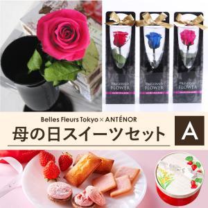 母の日 花 ギフト 苺 プレゼント #プリザーブドフラワー と いちご の スイーツセット 【A】 ショートステムローズ/アンテノール(ANTENOR) あすつく対応|belles-fleurs