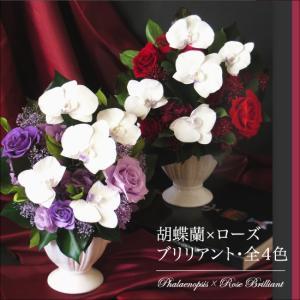 クリスマス 花 プレゼント 2020 プリザーブドフラワー   送料無料 プリザーブドフラワー #胡蝶蘭×ローズブリリアント|belles-fleurs