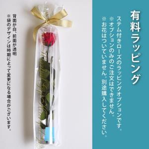母の日 ギフト ステム付きローズ 有料ラッピング(単品購入不可) oth|belles-fleurs