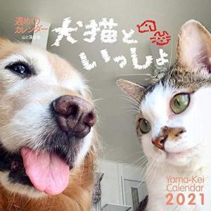カレンダー2021 週めくりカレンダー 犬猫といっしょ(卓上・リング) (ヤマケイカレンダー2021...