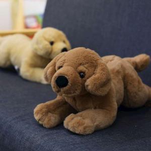 ぬいぐるみ いぬ 抱き枕 クッション おもちゃ インテリア かわいい 60cm|beluhappines