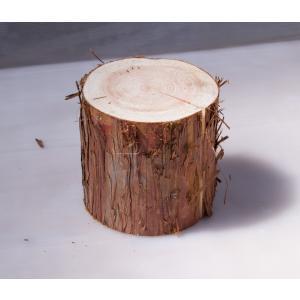 ちび丸太 直径約15cm高さ15cm 安心の国産材です。お部屋に自然の安らぎを。ミニサイズがかわいい丸太 ディスプレイ ストレス解消|beniyamokuzaicom