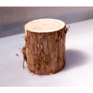 ちび丸太 直径約15cm高さ18cm 安心の国産材です。お部屋に自然の安らぎを。ミニサイズがかわいい丸太 ディスプレイ ストレス解消|beniyamokuzaicom